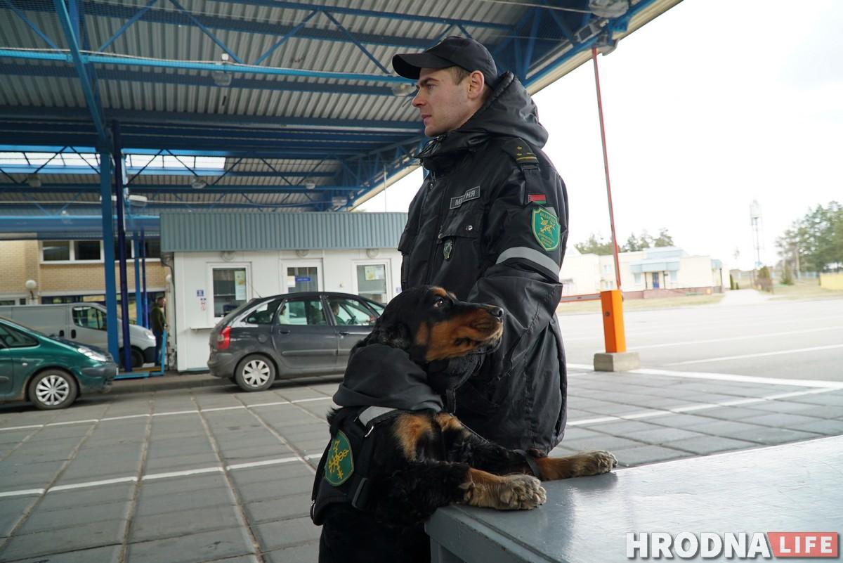 собаки на границе кинологи граница Гродненская таможня