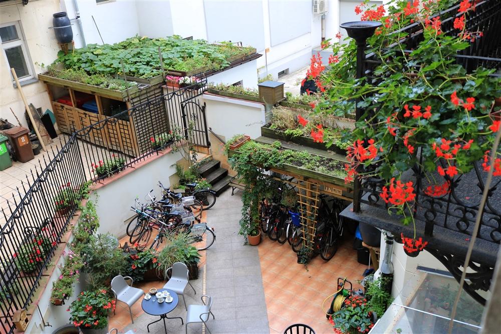 Сад во дворе гостиницы Chopin Boutique B&B. Фота: fot. Zofia Lisowska