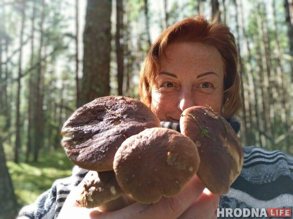 грибы грибная диета похудение