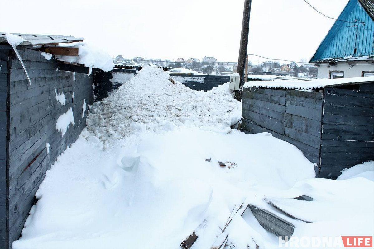 Столько снега убрали волонтеры с участка и вольеров