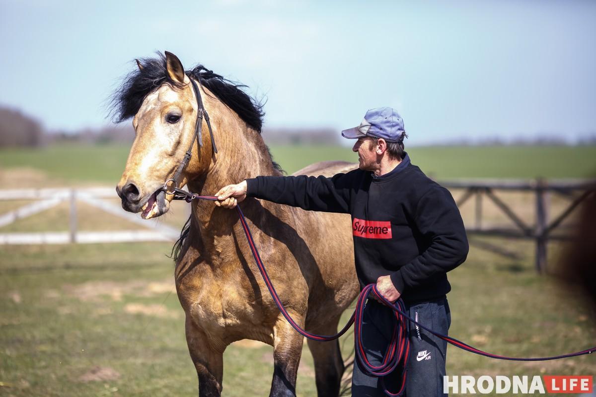 Жеребец-производитель Закон и коневод Михаил Василючек. Он работает на конюшне уже 20 лет . конюшня Эйтуны, совхоз Лидский