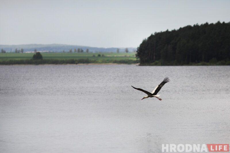 водохранилище Гродненской ГЭС отдых
