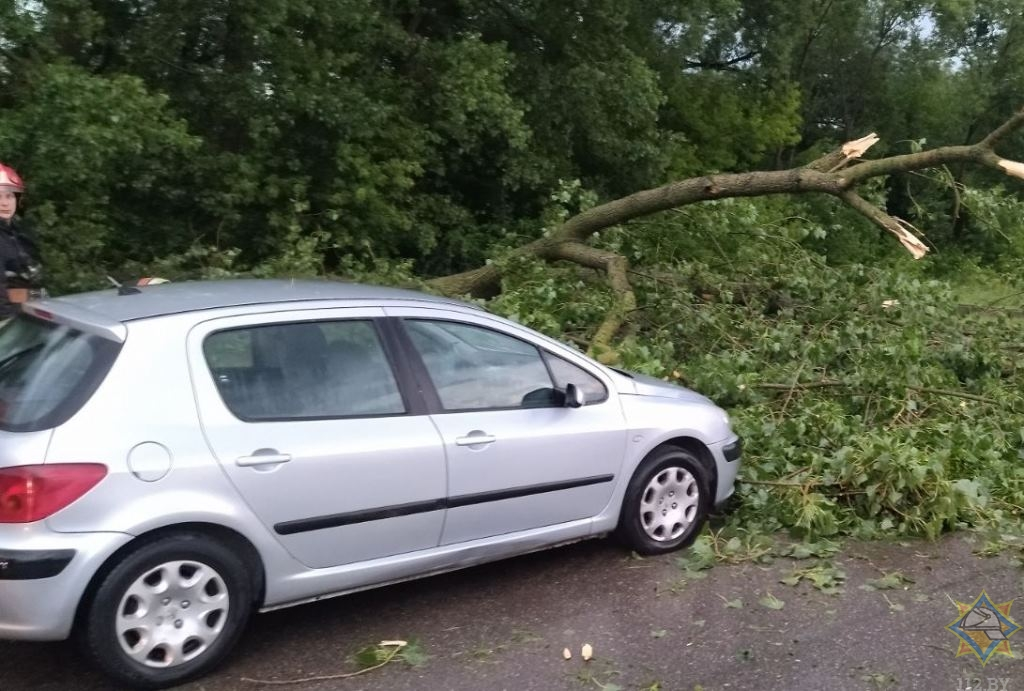 Падение деревьев, град, затопление центра. В Гродно прошла первая летняя гроза